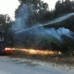 Pergerakan Cepat Brimob Dalam Menanggulangi Bencana Kebakaran Hutan
