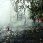 Kapolresta Barelang Perang Terhadap Kebakaran Hutan di Wilayah Batam
