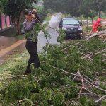 Masih Kenakan Baju Dinas, 2 Polisi Bantu Warga Evakuasi Pohon Tumbang