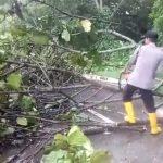 Personel Polresta Barelang Dengan Sigap Singkirkan Material Pohon Tumbang
