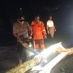 Polres Tanjungpinang Bersihkan Pohon Tumbang Cegah Kemacetan